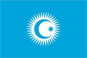 Official flag of Turkic Council by AY-Deezy