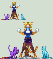 CATS by CaseterMK