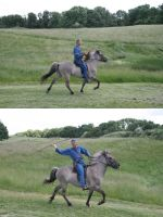 Iron Age Rider with Spear 2 by LPHogan