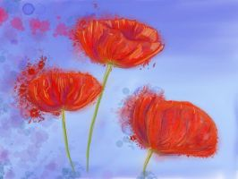Red Poppies by LilithDarck