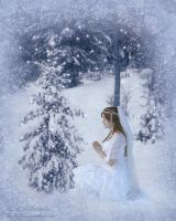 ::Winter's Wish:: by JunkbyJen