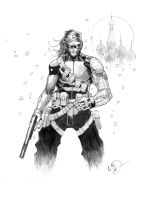 The Winter Soldier by Max-Dunbar