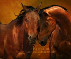 Brothers by Lissaburd