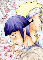 hinata and naruto by chaotisch