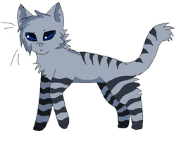 SilverStripe by staers55