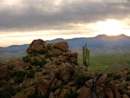 sonoran sunrise by eocjtlels