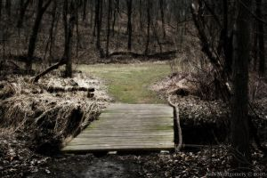 Silent Path by VoDooClown
