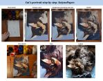 Traditional cat's portrait step by step by SatynaPaper