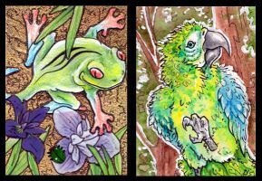ACEOs: Rainforest Spirits by MoonsongWolf