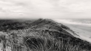 Oregon Dunes by CharlieA-Photos