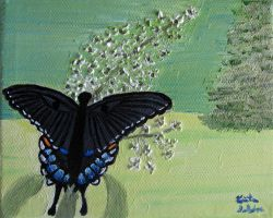 Black Swallowtail Butterfly 16 by Zorias