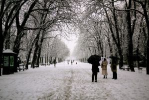 Snow in Paris by annamarcella24