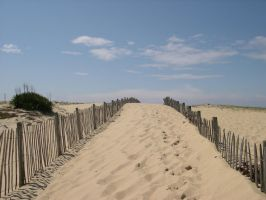 At the foot of the dune by Sweetlylou