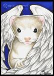Angel Ferret In Blue by natamon