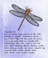 DragonFly Definition by kendravixie