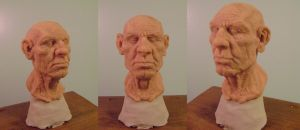 Old man study sculpt by b1938dc