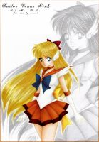 Sailor Venus Link by reirei18
