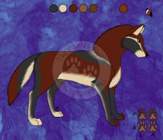 Ref Sheet: For Torzeng by ThePaintedPaws