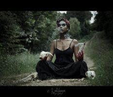 The Summoning - looking for Papa Legba by Nakhana