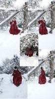rose red snow set 1 by magikstock