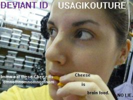 Cheese is Brain Food by usagikouture