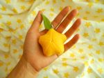 SALE | Paopu Fruit Mini Plush Keychain by Sir-Herp