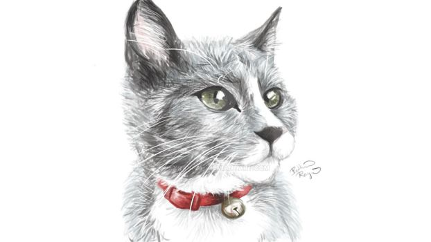 Art Challenge - Day 2 - Draw a Pet by KyranNyx