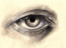 Eye quick sketch by peter-san