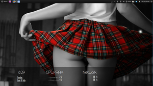 Eye Candy Girl. Conky And wallpaper included. by speedracker