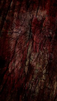 Free Texture 32 by SprenklePhotography