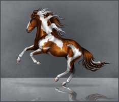 Wild Mustang by calie-coco
