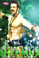Sheamus Artwork WWE by roXx81