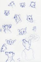Ratty Sketches by ShadowstalkerW