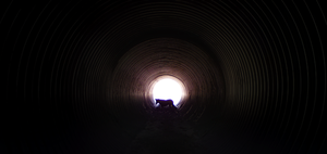 Nalle In A Tunnel by RadillacVIII