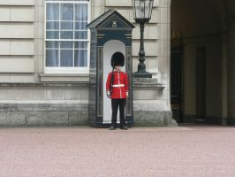 a guard at buckingham palace by Mysteriouspizza