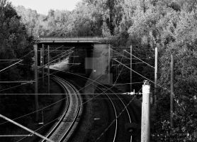 Rails by DevchonkaLucky