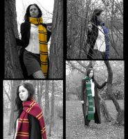 Hogwarts Houses by cybill