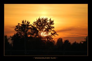 Vancouver Sun by bleaches