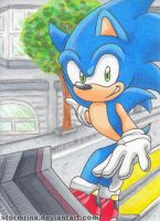 SA2 ~Hero Story~ [2/3] by Stormrina