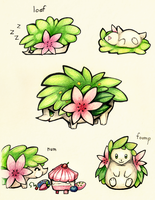 small waddling shrub sketches by Rosemary-the-Skunk