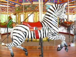 Carousel Zebra by monqy88
