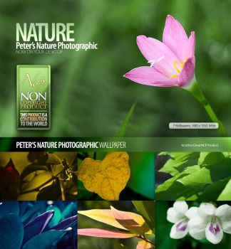 Nature_Photographic_Walls by petercui