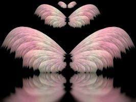 Apophysis Wings Slight Return by Gibson125