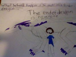 what whould happen if i met the enderdragon by ask-herobrine