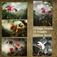 Vintage Heade by oldhippieart