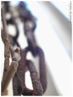 Vines and Chains by lhyne