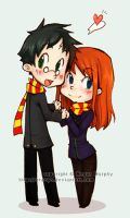 Harry and Ginny by MechaBerry
