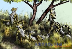 Cheetah Taur Family by Magpieb0nes