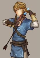 The Legend Of Zelda Hyrule Warriors, Link by TheLigth