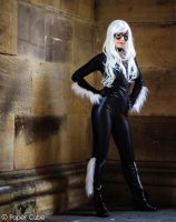 Black Cat - Marvel by Paper-Cube